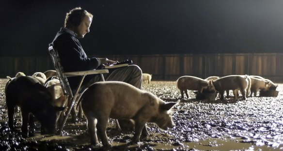 upstream-color-pigs-mud