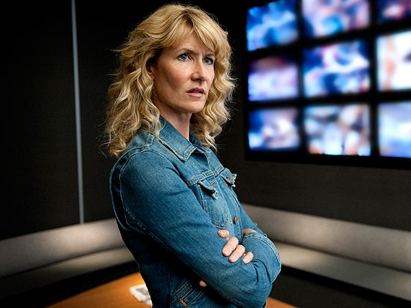 laura-dern-tvs-enlightened