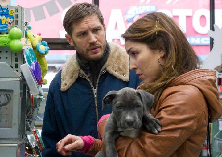 tom-hardy-puppy-noomi-rapace-the-drop-pitbull-dog