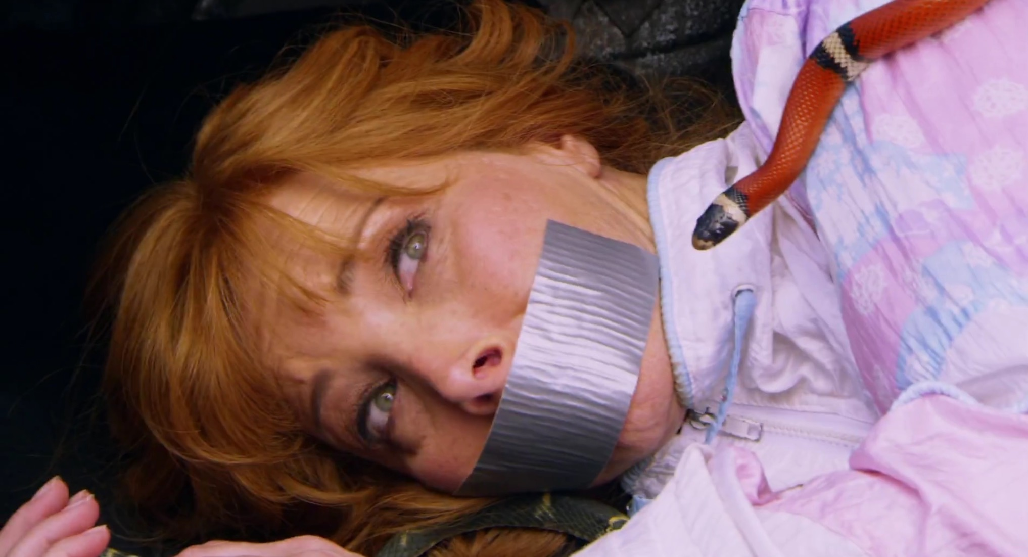 Lisa Kudrow Cant Get Valerie Cherish Out Of Her Head -9862