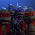 Turtle Reaction